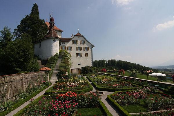 Schloss_Heidegg.jpg