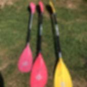 Paddles 2.jpg