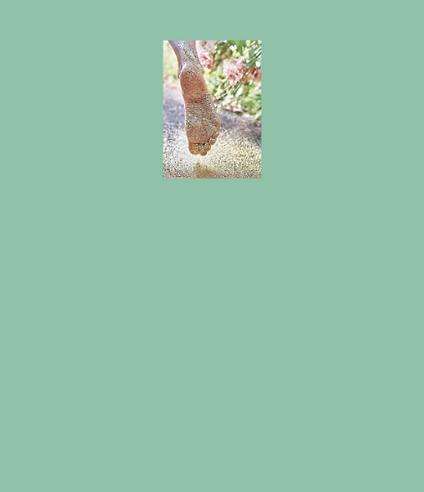Lebensglitzer_Postkarte_Shop.png