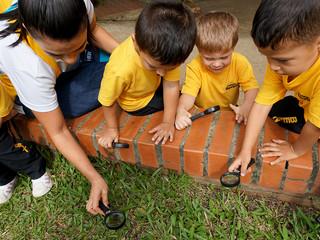 Investigadores de hormigas