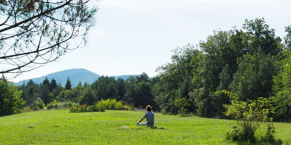 Midsummer Yoga & Meditation Retreat | Connecting with Nature