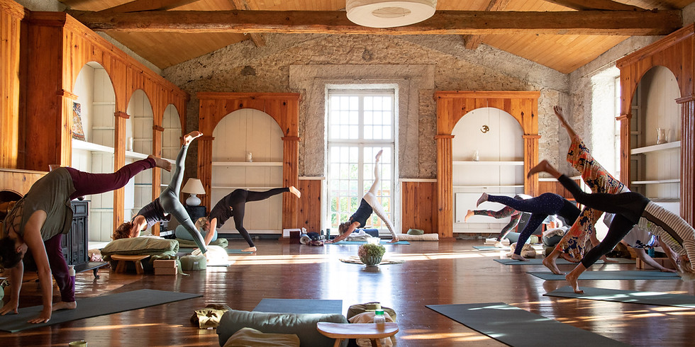 Science of the Soul   Raja Yoga Teacher Training