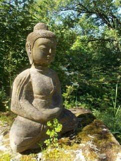 le Bouddha.jpg