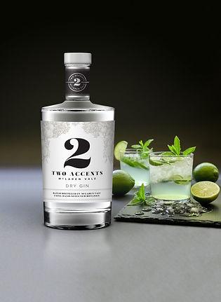 gin-advert-image-v2.jpg