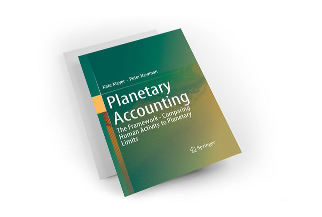 PLANETARY ACCOUNTING BOOK EXP.jpg