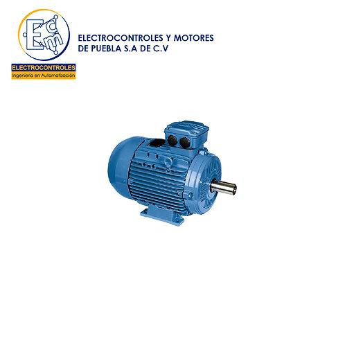 MOTOR NEMA TRIFÁSICO 00156MT3E143T