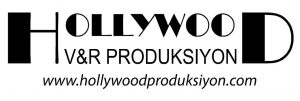 hollywod-logo-1-300x101