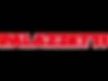 Logo Palazzetti.png