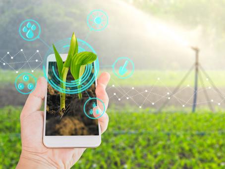 Agricoltura 4.0: soluzioni e vantaggi per le aziende