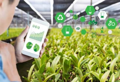 I sistemi di supporto alle decisioni in agricoltura