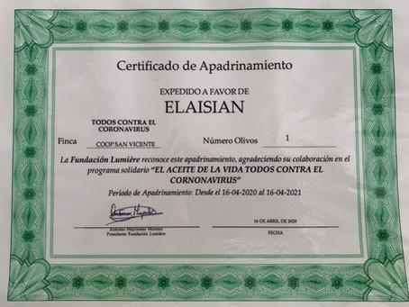 Elaisian acquista un olivo centenario solidale per far fronte al Covid-19