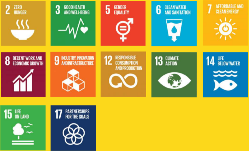 Obiettivi sviluppo Sostenibile Nazioni Unite