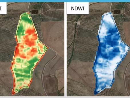 Le immagini satellitari e il mondo agricolo