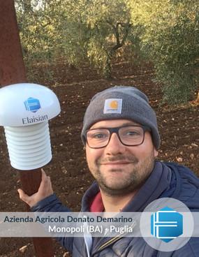 Azienda Agricola Donato Demarino