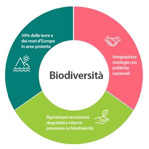 Elementi della biodiversità
