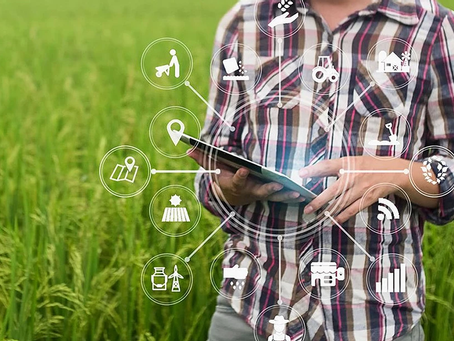 Big Data in agricoltura - Osservatorio Smart AgriFood