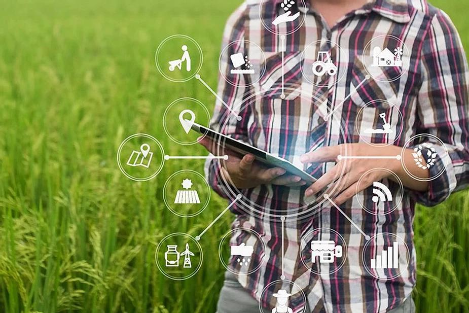 come usare i big data in agricoltura
