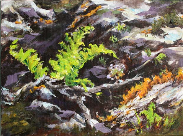 The Fern 12x9 Acrylic