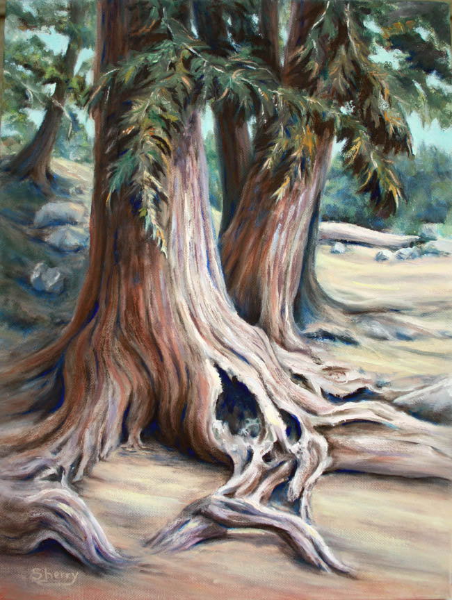 Rambling Roots 12x16 oil