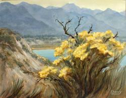 Wilmer Wetlands 14x11 Oil