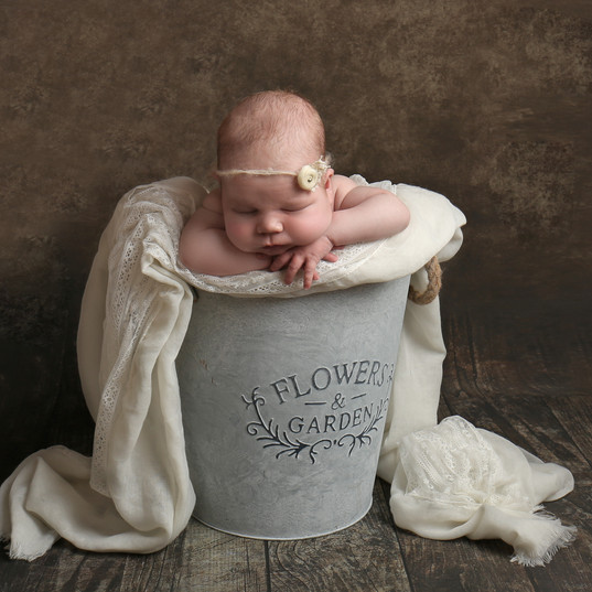 newborn baby girl sleeping in bucket draped with lace
