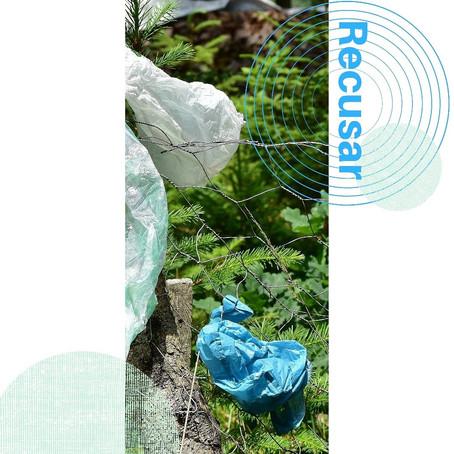 Os 5 Rs da Sustentabilidade - Recusar