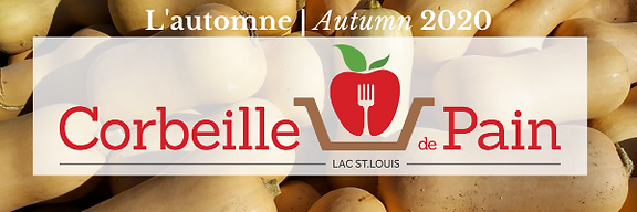 CDP Fall Newsletter Banner.png