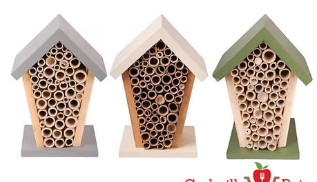 How to build a bee house?