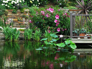 A Garden's Impact When Selling a House - 3 Big Staging Ideas
