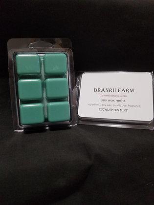 Eucalyptus Mint Wax Melt