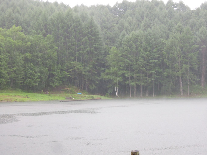 恵みの雨(2021/8/2)