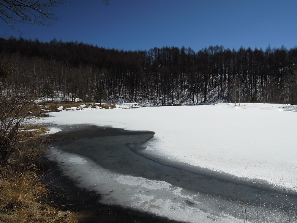3月12日 氷と雪に覆われています。