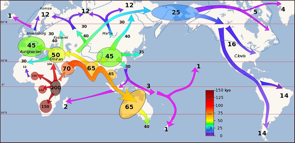 Карта заселения мира современными людьми