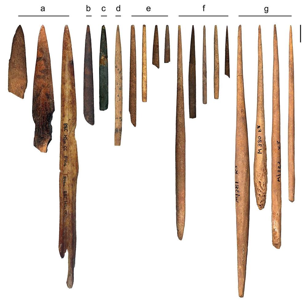 Палка-копалка древних людей