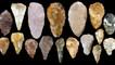 Первые орудия труда древнего человека: из чего изготавливались и для чего служили