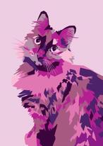Luna in Pink & Purple