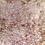Thumbnail: Striped Gargoyle Gecko  - ID:20L1