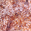 Thumbnail: Striped Gargoyle Gecko  - ID:20J2