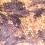 Thumbnail: Pinstripe Harlequin Crested Gecko ID: 20X2