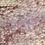 Thumbnail: Striped Gargoyle Gecko  - ID:20AZ2