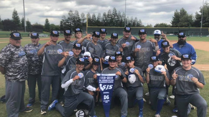 Wildcats Conquer Adversity - Win Four Straight Games To Claim D-VI Section Baseball Championship