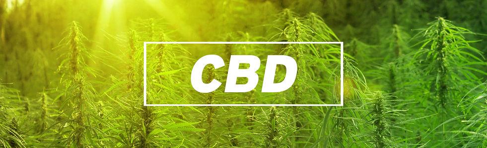 cbd website banner.jpg