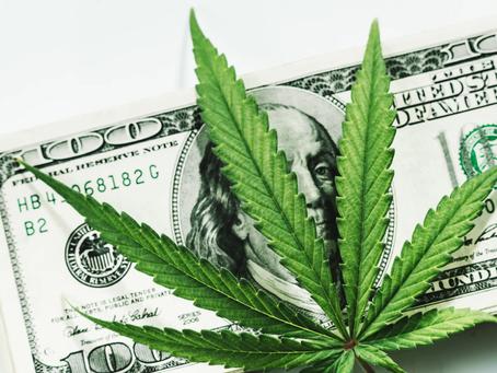 Cannabis - Sector Recap