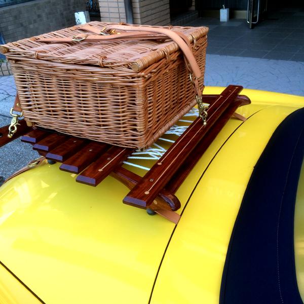 trunk carrier