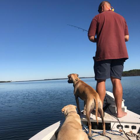 Plenty of Places to Fish