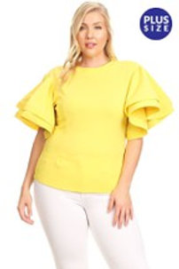 Plus size flarred sleeves top