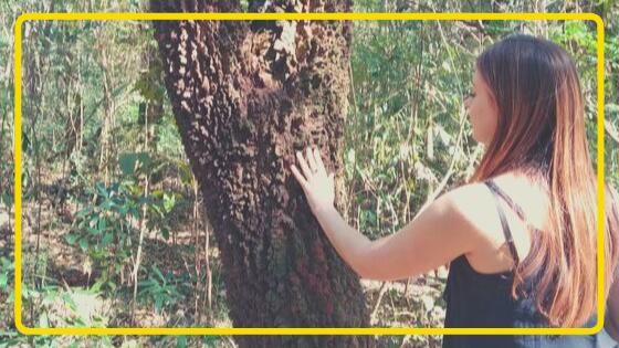 Foto de jovem sentindo a textura de uma árvore com casca grossa.