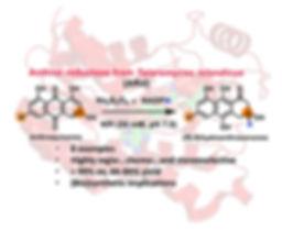 TOC-revised-Green Chemistry-2019.jpg