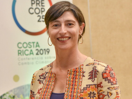 Column: Nature-based solutions to climate change adaptation by Ignacia Holmes