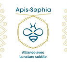 apis sophia.jpg
